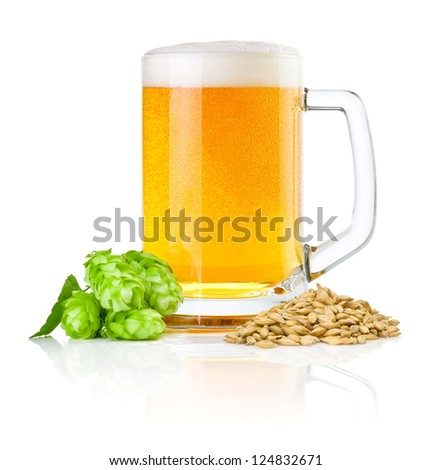 Mug fresh beer with Green hops and wheat isolated on a white background