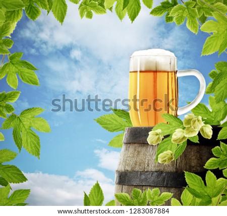 Mug of beer on old barrel with decoration of fresh hop plant, on background of blue sky