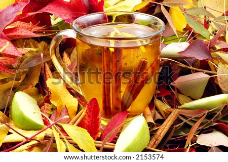 Mug of hot apple cider steeping with cinnamon sticks surrounded by autumn leaves