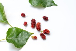 mulberries fruit and mulberry leaf on white background healthy mulberry fruit food isolated 2019