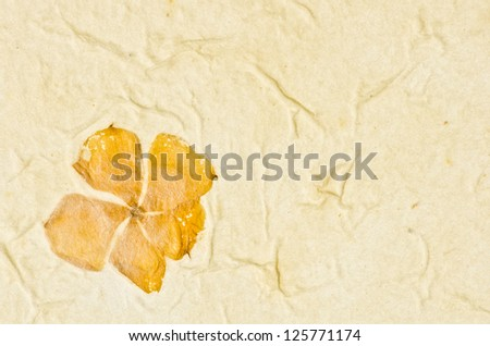 Mulberry paper texture with petals background. Retro, rough and rustic handmade paper