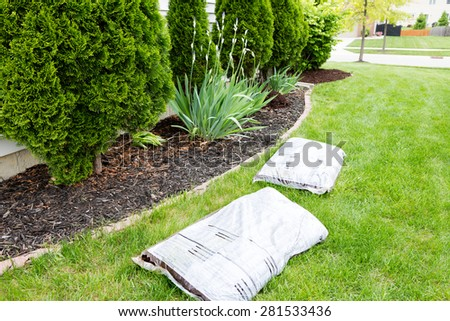 Mulching flowerbeds around the house with bags of organic mulch from a nursery lying on a green lawn alongside a bed containing shrubs and evergreen Thuja trees in a yard work concept
