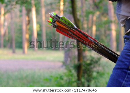 multi-colored arrows from the bow for shooting, training archers in the woods, the theme of recreation and recreation  #1117478645