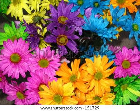Multi colored flowers stock photo 151729 shutterstock for How to make multi colored flowers