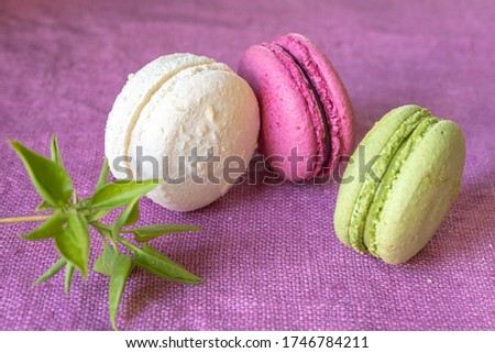 Multi-colored macaroons and green is a young branch of lilac on a linen napkin. Mcarons or macaroons is French or Italian dessert. Close-up. Selective focus