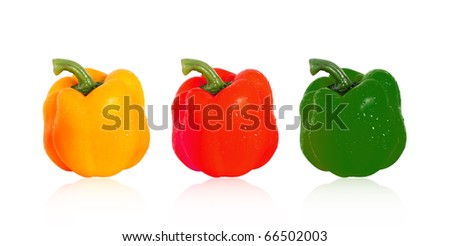 multi colored of paprika Isolated