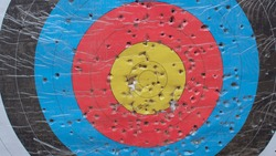 Multi-colored perforated object for children's archery. Development of the skill of accuracy, hitting the target.