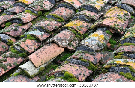 Multi-colored picture of roof tiles with moss grown among them