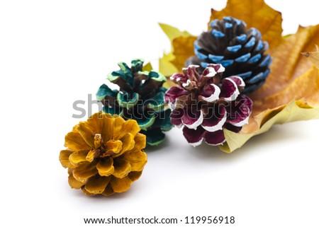Multi-colored pinecone