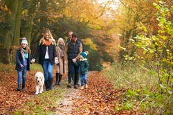 Multi-Generation Family Walking With Pet Golden Retriever Dog Along Autumn Woodland Path