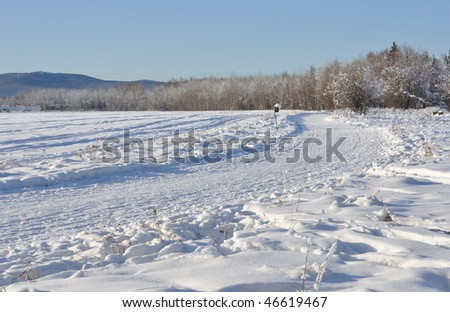 Multi-use Trail through Boreal Forest during winter in Alaska