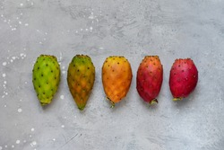 multicolored cactus fruit ( prickly pears ) on a gray table. harvest concept, season change. exotic fruit opuntia ficus-indica