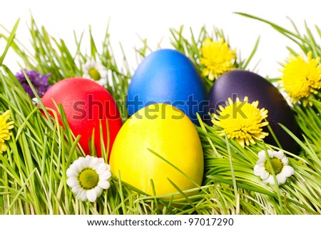 Multicolored Easter eggs on green grass. Image isolated on white background