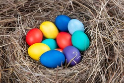 Multicolored eggs in a nest in the hay. Concept easter.