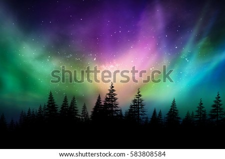 Multicolored northern lights (Aurora borealis) on Canadian forest