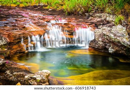 Multicolored river in Colombia, Cano Cristales #606918743