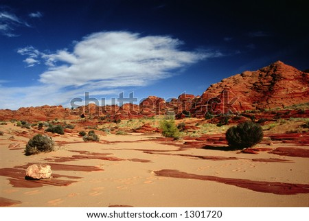 Multicolored sandstone domes embracing a wash in Paria Canyon.