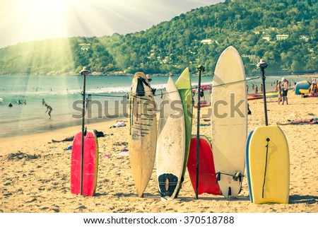 multicolored surfboards at ...