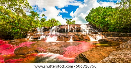 Multicolored waterfall river in Colombia, Cano Cristales #606918758