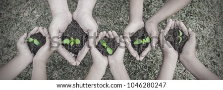 Multicultural hands of adult and children holding young plant over green grass background. Earth day environment friendly harmony together spring black and white concept panoramic banner.