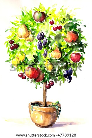 Multifruit, colorful tree in pot hand-painted.Picture I have created myself with watercolors.