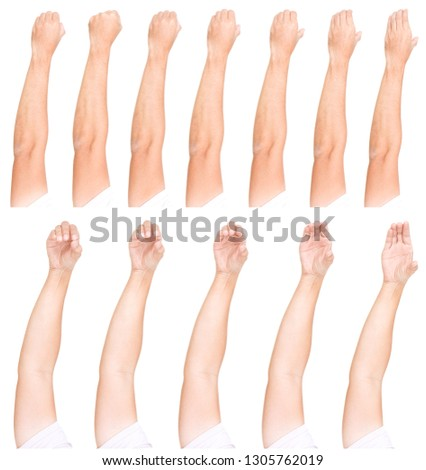 Multiple male hand gestures isolated over the white background, set of multiple images.Man Hand Collection.