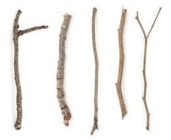 Multiple sets of branches old wood collection closeup white isolated