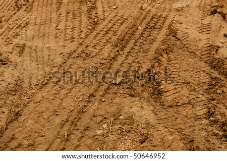 Multiple Truck Tire Tracks in Brown Mud