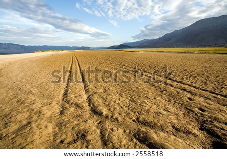 Multiple vehicle tracks on a muddy and wet tidal marsh. - stock photo