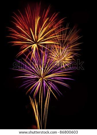 Multiple vibrant fireworks exploiting in the sky