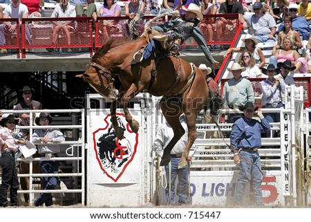 Multiple World Champion Saddle Bronc rider, Dan Mortensen, makes a successful ride at the 2005 Cheyenne Frontier Days rodeo.