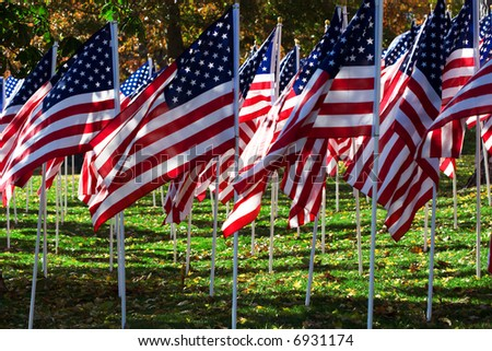 Multitude of United States' Flags - stock photo
