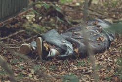 Murder victim wrapped in tarpaulin with feet protruding in leafy forest