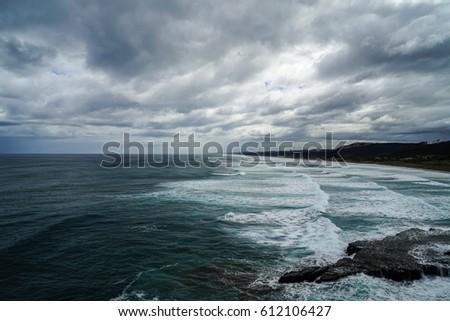 Muriwai Gannet Colony, Muriwai Regional Park, West Coast of the North Island in Auckland,New Zealand. #612106427
