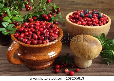 Muschroom and cowberries in ceramic pot and wooden bowl.