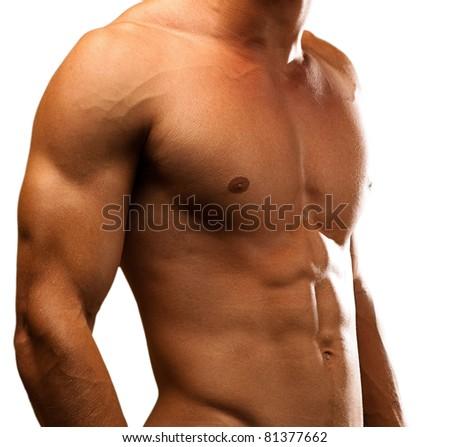 penis sval