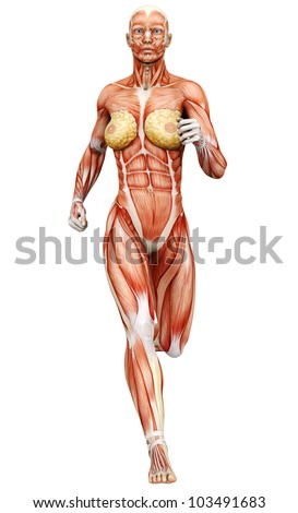 muscle woman running