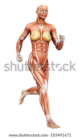 Muscle Woman Running Side View Ez Canvas