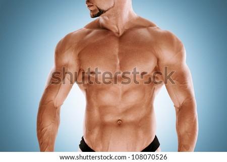 Muscular bodybuilders torso - stock photo
