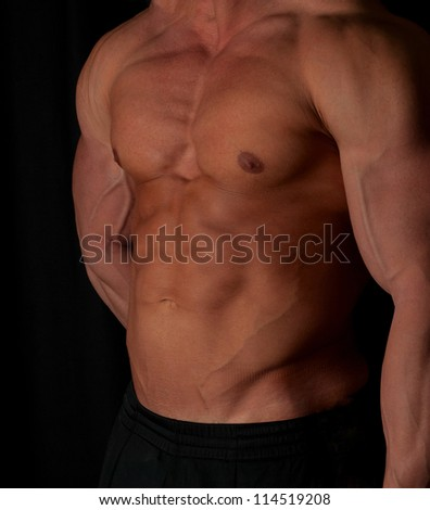 Muscular male torso of bodybuilder