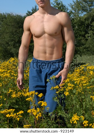 Muscular male torso on a meadow