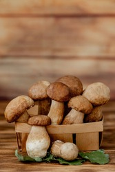 Mushroom Boletus over Wooden Background. Autumn Cep Mushrooms. Ceps Boletus edulis over Wooden Background, close up on wood rustic table. Cooking delicious organic mushroom. Gourmet food.
