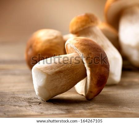 Mushroom Boletus over Wooden Background. Autumn Cep Mushrooms. Mushrooms Picking