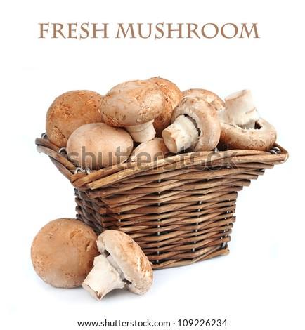 mushroom champignon in box on white background