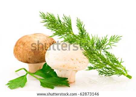 Mushroom. Champignons, green parsley and dill leaves on white background