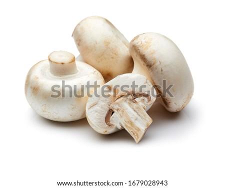 Mushroom Isolated on White Background Foto stock ©