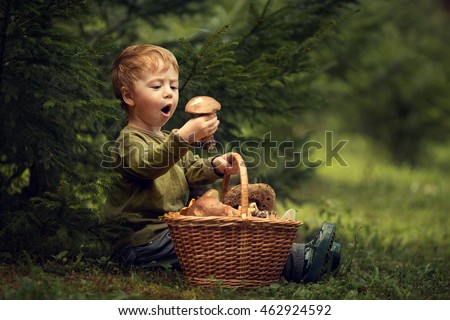 Mushroom picker. Cute little boy with basket of mushrooms and a surprised facial expression. Image with selective focus and toning