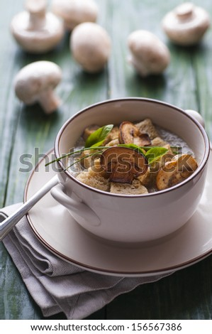 Mushroom pottage with bread croutons on green table