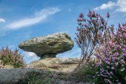 Mushroom Rock at brimham rocks North Yorkshire