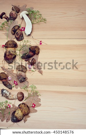Mushrooms (boletus), oak leaves, some small flowers and yellow pine needles on a wooden background. Retro style #450148576
